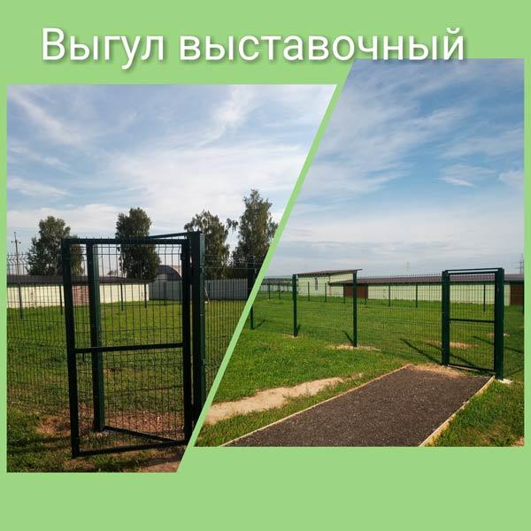 Гостевое поле для собак